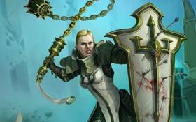 Картинка стрелы, diablo 3, crusader, female crusader, Diablo III - Reaper of Souls