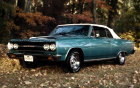 Обои лес, листья, Chevrolet, кабриолет, шевроле, мускул кар, 1965