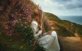 Картинка девушка, тропа, цветочки, TJ Drysdale, Lost Dreams