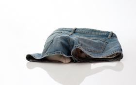Картинка torode, джинсы, кошка