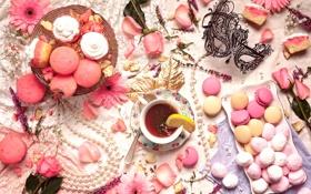 Обои розовый, чай, роза, ожерелье, маска, пирожные, гербера
