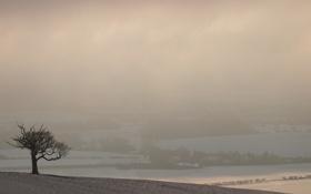 Картинка снег, деревья, природа, дерево, холмы, село, вид