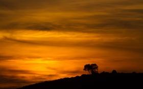 Обои закат, облака, деревья, силуэт, склон, небо