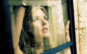 Картинка взгляд, девушка, капли, окно