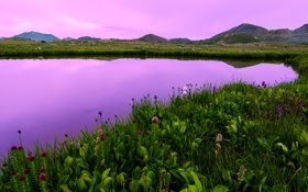 Обои колорадо, закат, полевые, горы, сша, озеро, цветы