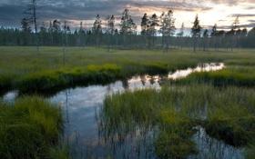 Картинка поле, пейзаж, закат, природа, река