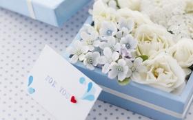 Картинка сердце, romantic, цветы, романтика, письмо