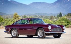 Обои деревья, горы, Aston Martin, классика, раритет, 1958, DB4