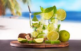 Обои ice, tropical, drink, lime, cocktail, mojito, beach