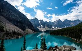 Обои лес, небо, горы, Канада, forest, sky, mountains