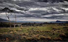 Картинка остров, Тасмания, Марайа