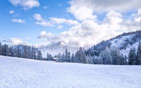 Обои зима, лес, снег, горы, дом, елки