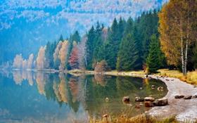 Картинка осень, лес, вода, деревья, отражение, река, камни