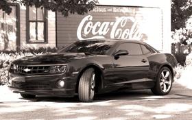 Обои camaro, black, chevrolet, coca cola