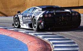 Картинка lamborghini murcielago, FIA GT1 World Championship, San Luis