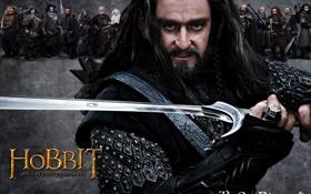 Обои гном, The Hobbit: An Unexpected Journey, торин