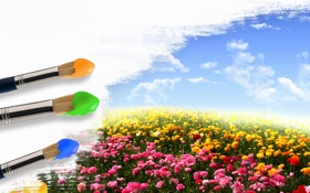 Обои поле, небо, облака, цветы, краски, кисти