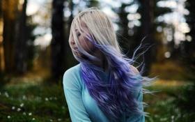 Картинка лес, цветы, волосы, forest, flowers, hair, фиолетовый-светлые волосы