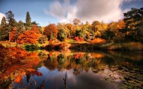 Картинка беседка, пруд, парк, осень