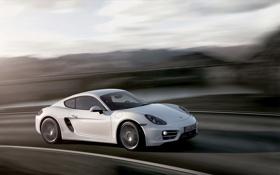 Обои Белый, Porsche, Колеса, Машина, Капот, Cayman, Купэ