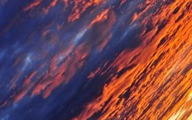 Обои закат, облака, небо