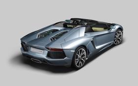 Картинка Суперкар, Авто, Ламборгини, вид сзади, lp700-4, aventador, Lamborghini