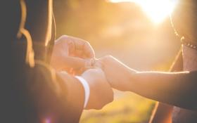 Обои руки, кольцо, свадьба