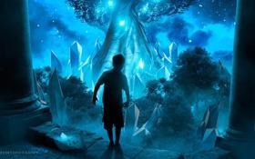 Картинка ночь, сияние, дерево, мальчик, кристаллы, desktopography