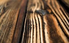 Обои текстура, фактура, доски, дерево