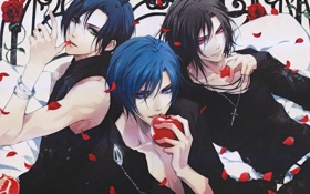 Картинка яблоко, розы, лепестки, клубника, парни, wand of fortune, usuba kagerou