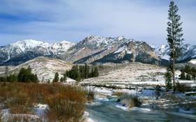 Обои зима, снег, пейзаж, горы, река, Природа, кусты