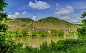 Обои лес, горы, город, река, фото, берег, Германия