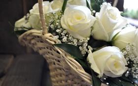 Обои белые, розы, букет, корзинка
