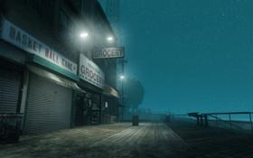 Обои пляж, небо, звезды, ночь, парк, нью йорк, Grand Theft Auto IV