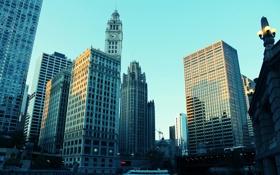 Обои высотки, здания, Chicago, америка, сша, небоскребы, чикаго