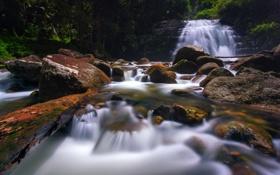 Обои лес, деревья, река, камни, водопад