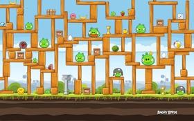 Обои игра, птички, game, уровень, angry birds
