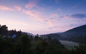 Картинка лес, небо, трава, облака, деревья, пейзаж, природа