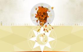 осень,october, октябрь, календарь, месяц, числа,череп,листья,зодиак,скорпион обои