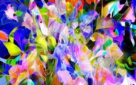Обои линии, цветы, рендеринг, краски, лепестки