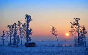 Обои закат, поле, зима, небо