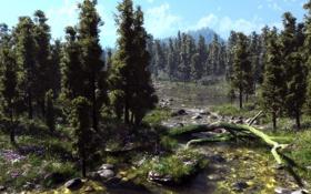 Картинка деревья, цветы, природа, река, камни, мох, арт