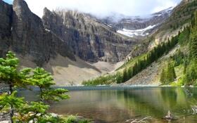 Обои облака, деревья, горы, озеро, камни, берег, Banff National Park