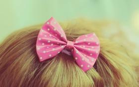Обои розовый, горошек, бант, бантик, заколка