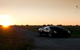 Обои cars, lamborghini, солнце, тачки, gallardo, авто обои, auto wallpapers