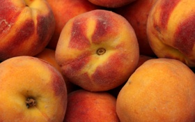 Обои фрукты, персики, мохнатые