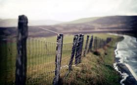 Картинка дорога, макро, забор