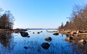 Картинка деревья, камни, залив