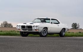 Обои 1969, Coupe, Pontiac, понтиак, Firebird, фаерберд, Trans Am Ram Air IV