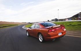 Обои Charger, Оранжевый, Дорога, Машина, Трек, в движении, Dodge